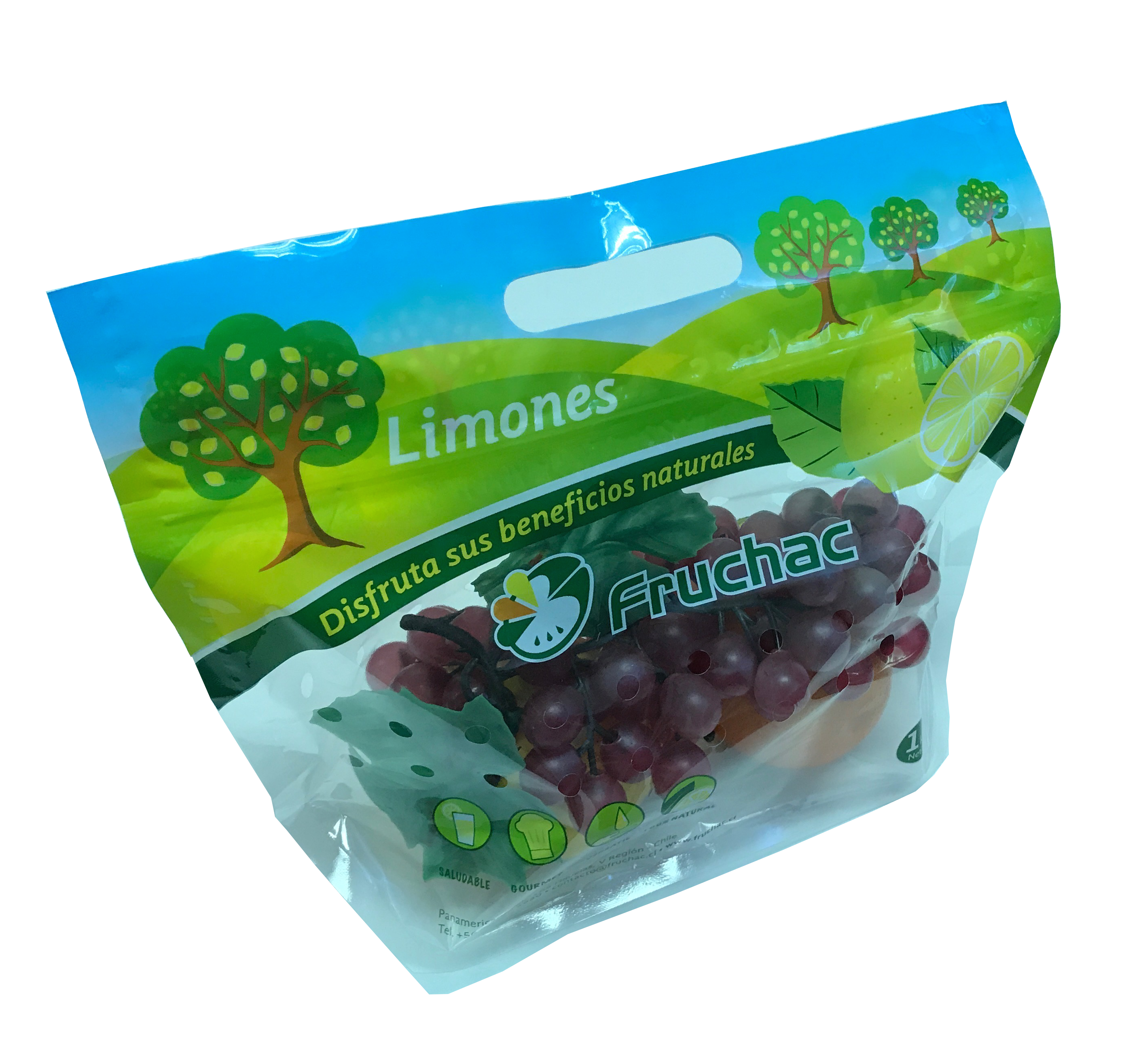 Fruits & Vegetable Bags by Utoc Singapore